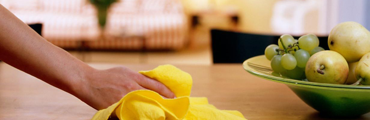 house cleaning santry