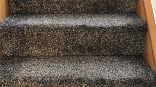 Carpet Cleaning Sandyford